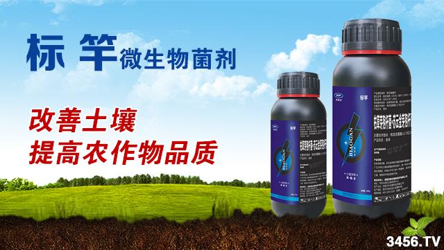 """作物施用菌肥的理由是什么?为什么说它是恢复地力的""""救命稻草""""?"""